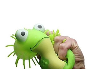 Large Puffer Frog Toy